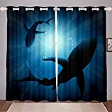 Shark Window Drapes Blue Ocean Sea Marine Life Underwater Word Oasis Fish Curtains, For Kids Boys Girls Teens Blackout Room Darkening Thermal Insulated Wide Panel Curtains for Bedroom 104'x 84'