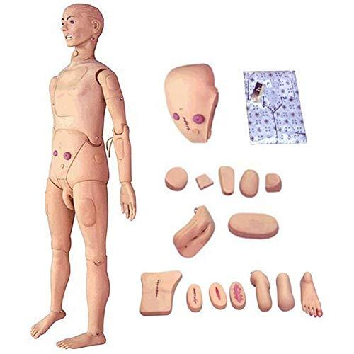 N\C Multifuncional Combinación Enfermería Formación Maniquí Modelo con módulos Intercambiables para genitales y escaras y módulos de Trauma para Entrena, 170 cm
