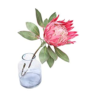 Calcifer 1 Pcs 75 cm The King Protea (Protea Cynaroides) Artificial Flowers Plants for Home Garden Wedding Party Decoration (Rose Red, 2)
