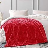 Whale Flotilla Oversized Raschel Throw Blanket Ultra Soft Flannel Blanket, Super-Warm 450GSM Plush Luxury Cozy Fluffy Thick for Winter, 50x70 Inch, Orangish Red