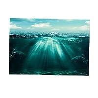 CUTICATE 3D水族館の背景魚の水槽の背景静的しがみつく壁紙ステッカーS / L - 61x41cm