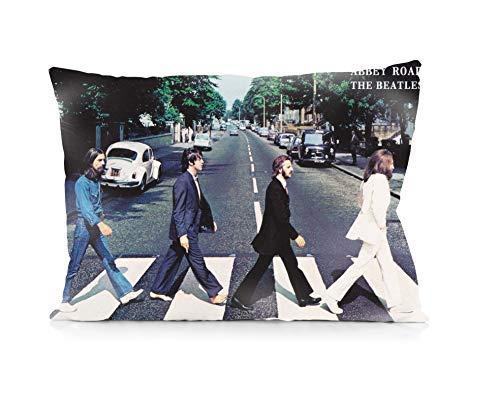 Rechzng Li The Beatles Abbey Road Pillowcase Both Sides Print Zipper Throw Pillows Covers 20x30 Inches