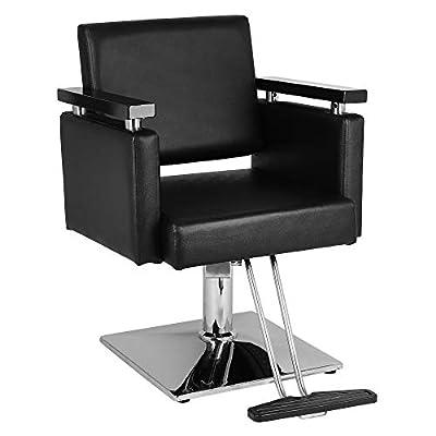 Hair Beauty Equipment Hydraulic Barber Chair Mo...