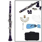 JFZCBXD 17 Teclas Clarinete Jugar Grado Instrumento Clarinete con Guantes más limpios Planas