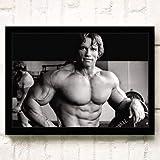 XWArtpic Retro Classic Hollywood Movie Star Wall Art Schwarzenegger Stallone...