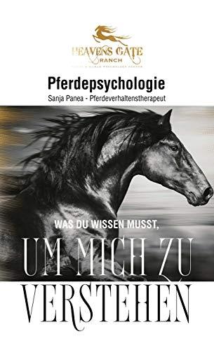 Pferdepsychologie: Was du wissen musst, um mich zu verstehen