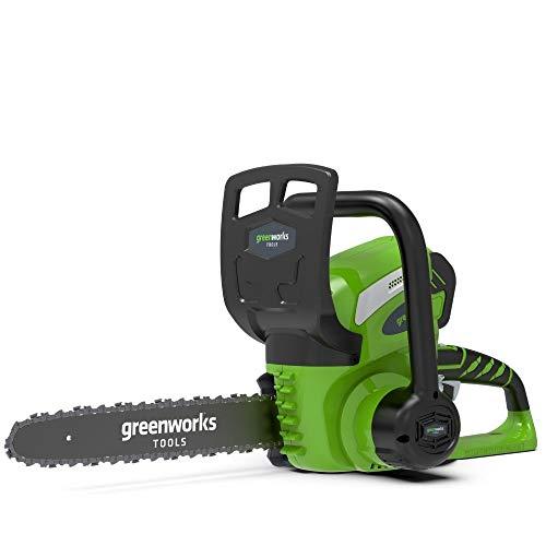 Greenworks Batteria Motosega a Catena G40CS30K2, Li-Ion 40V 4,3 m/s Velocità della Catena 30 cm Lunghezza Spada 120 ml Volume del Serbatoio dell'Olio Manico Completo di Batteria 2 Ah e Caricabatterie