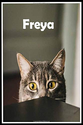 Freya: Personalized cat Sketchbook For Girls & kids With Name - 6x9 120 Pages.Birthday gift idea.: baby  girl gifts Kawaii cute cats lovers,sketching ... 110 Pages, 6x9, Soft Cover, Matte Finish