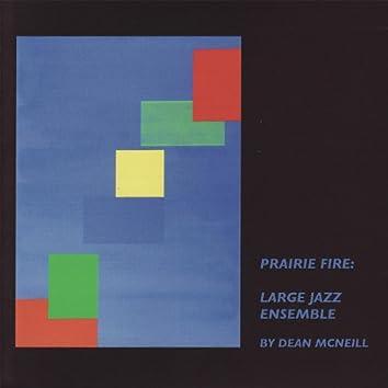 Dean McNeill: Prairie Fire