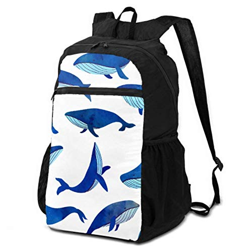 Packable Daypack Backpack Hiking Blue Whale Ocean Beauty Hiking Daypacks for Men Backpack Packable Lightweight Waterproof for Men & Womentravel Camping Outdoor