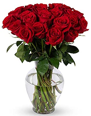 Benchmark Bouquets 2 Dozen Red Roses, With Vase (Fresh Cut Flowers) by Benchmark Bouquets