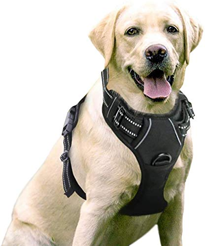 rabbitgoo Dog Harness, No-Pull Pet Harness with 2 Leash Clips, Adjustable Soft Padded Dog Vest, Reflective No-Choke Pet Oxford Vest with Easy Control Handle for Large Dogs, Black, L, Chest 20.5-36'