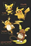 Pikachu Evolutions: Pichu, Raichu, and Alolan Raichu Blank Sketchbook Notebook Journal