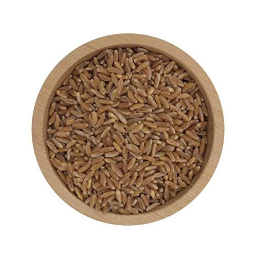 ecoterra Bio Kamut   Khorasan Weizen   2,5 kg