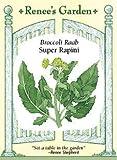 Broccoli Raab - Super Rapini Seeds