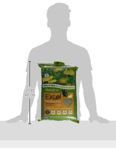 Burgess Excel Feeding Hay with Dandelion and Marigold 1kg (Pack of 3) 3