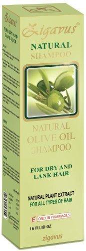 Zigavus Aceite oliva Extracto Natural champú 450ml para secos, mate y anémico Cabello! Cuidado del cabello! PH neutro