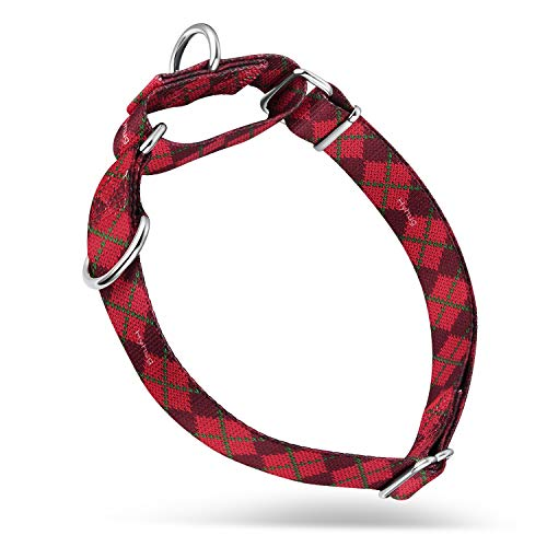 Hyhug Pets Premium Upgraded Martingale Dog Collar for Medium Dogs Daily Use, Walking - Two Loops Can Attached ID Tags / Ordinary Martingale Collar.(Medium, Red Sweater)