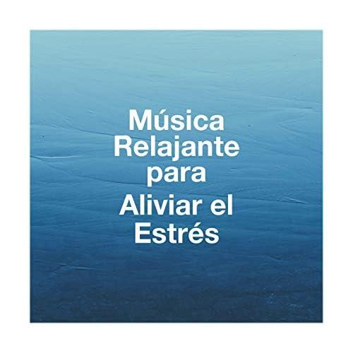 Relaxation - Ambient, Musica Relajante, Relajacion Del Mar