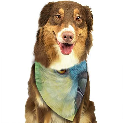 Jxrodekz Blue Fronted Amazon Parrot Realistische Malerei Hund Bandana, Dreieck Plaid Lätzchen Halstuch Schal für Hund Katze Haustier
