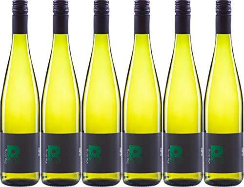 Wein.gut Via Eberle Riesling 2019 Trocken (6 x 0.75 l)