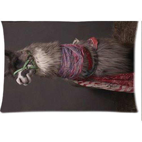 Funny Cute Animal Lama Housse d'oreiller zippée 50,8 x 76,2 cm