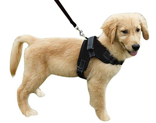 YJZQ No-Pull Hundegeschirr Nylon Halsband Hund Anti-Puffer Hundehalsung Plush Vest Kette Hund Haustier für mittelgroße Hunde Bulldogge Golden Retriever Schlittenhund