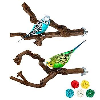 Lot de 2 perchoirs en bois naturel pour oiseaux, perchoirs en bois de raisin sauvage pour cage à oiseaux, grimper debout, cage à oiseaux, accessoires pour perruches, perruches, canaris (style 1)