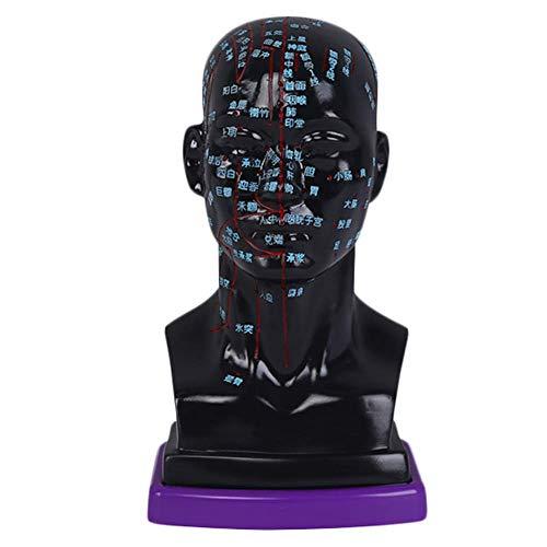 Kopf Akupunktur Modell - Human Akupunktur Modell - Full Face Gesichts falsche HD-Beschriftung Ärzte Akupunktur-Modell - für das Lernen Menschlichen Meridian Punkte Chinesische Medizin,Schwarz