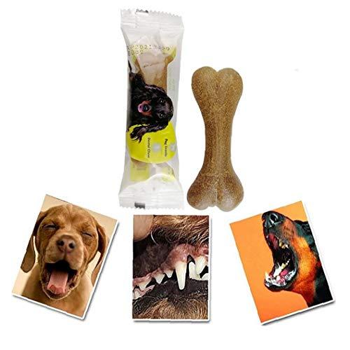 Snack-1pc Natural Para Mascotas Huesos Del Perrito De La Dentición Del Perro De Juguete Masticables Para Perros Molar Seguridad Palillo De Hueso De La Serpiente Para Los Pequeño Mediano Perros Grandes