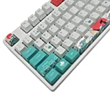 COSTOM Keycaps PBT Dye Sublimation Upgrade 108 Keycap Set OEM Profile Keycaps Keyset with Puller for Cherry Mx Gateron Kailh Switch Mechanical Keyboard (Coral Sea)