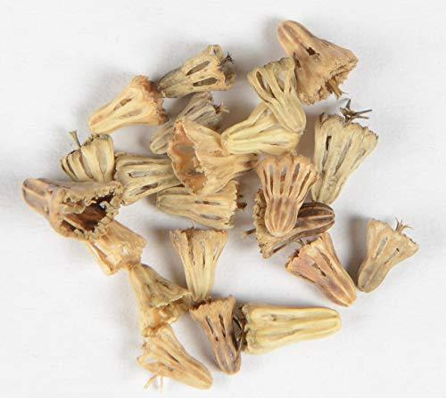 Garten-Skabiose, Samt-Skabiose Scabiosa atropurpurea Mischung 35 Samen
