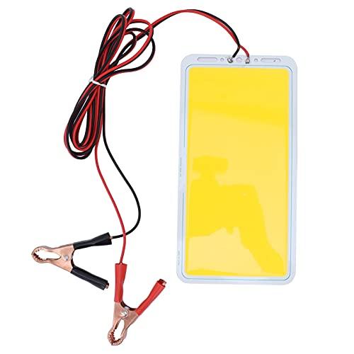 Garosa 70W 12V Fuente de luz de Tira de Panel LED Foco de Bricolaje Iluminación de Piso 220x112mm Blanco cálido(Blanco cálido)