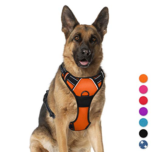 BARKBAY No Pull Dog Harness Large Step in Reflective Dog Harness with Front Clip and Easy Control Handle for Walking Training Running(Orange,XL)