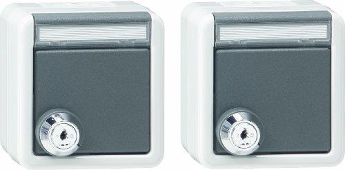 Gira 078730 Schuko stopcontact 2-voudig labelveld slot sorteren waterdicht opbouw, grijs