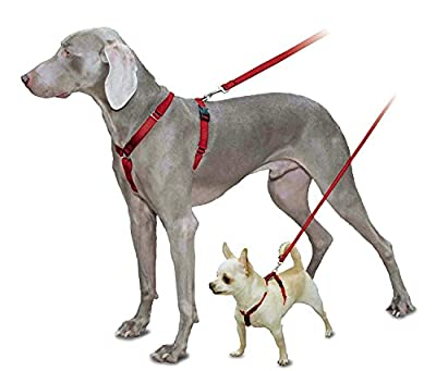 PetSafe Sure-Fit Harness, Adjustable Dog Harness from the Makers of the Easy Walk Harness, RED, SMALL by Toys & Behavior