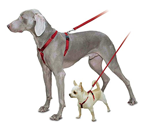 PetSafe Sure-Fit Harness, Adjustable Dog Harness from the Makers of the Easy Walk Harness, RED, MEDIUM