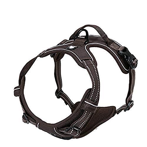 Truelove Hundegeschirr TLH5651,verhindert Zerren, reflektierende Nähte sorgen für Sichtbarkeit in der Nacht, für Abenteuer im Freien, groß