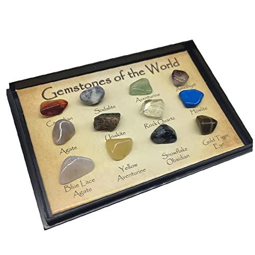 12pcs / Set Gemmes of the World Minerals Specimen Natural Politics Polish Rock Dillling School School Geological Education Stones