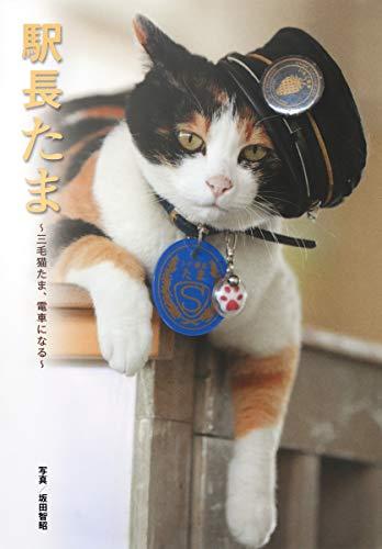 駅長たま ~三毛猫たま、電車になる~