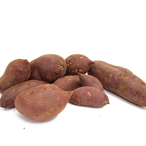 茨城産 シルクスイート(さつま芋)低農薬 5kg