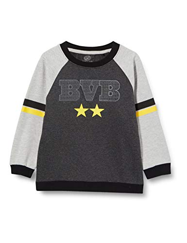 Borussia Dortmund Unisex Młodzieżowa bluza BVB dla dzieci rozmiar sweter, szary (Grey), 104