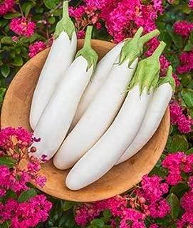 Best rare vegetable seeds Reviews