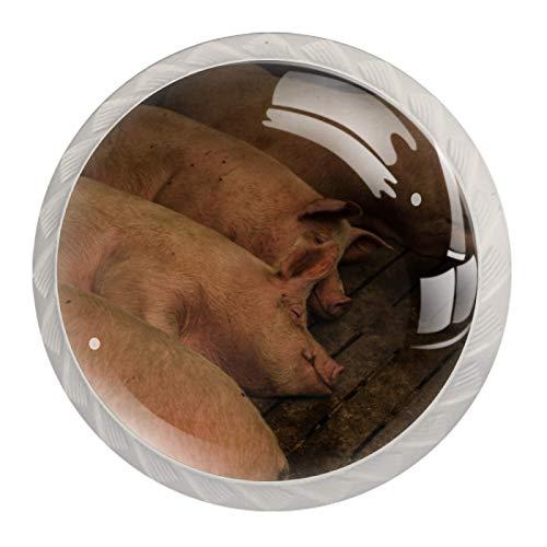 4 pomos para gabinetes de cocina, bonitos tiradores cuadrados de cristal transparente con tornillos para cocina, aparador, armario, baño, armario, cochera, cerdos gordos tumbados en la granja