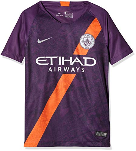 NIKE Manchester City FC Breathe Stadium 3rd Camiseta, Night Purple/Reflective Silver, Large Unisex niños