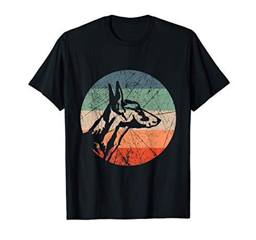 Podenco Ibicenco - Ibizan Hund - Windhund T-Shirt