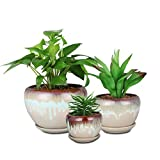 SQOWL Vintage Rustic Drip Glazed Round Ceramic Succulent Cactus Herbs Planters Flower Pots Small to Medium Sized with Saucers for Home Balcony Office Set of 3 Indoor Outdoor