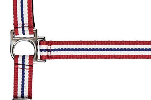 HKM nylon haltervlaggen met karabijnhaak, Pony, Vlag Noorwegen - 7914