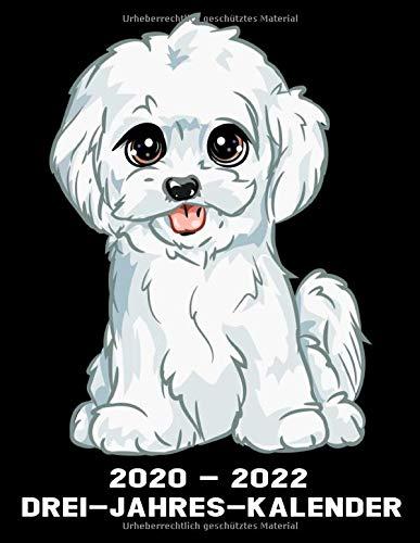 2020 -2022 Drei - Jahres - Kalender: Malteser Hund - Hunde Kalender Terminplaner Buch - Jahreskalender - Wochenkalender - Jahresplaner