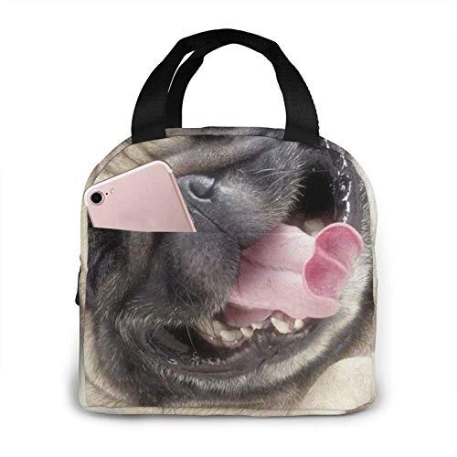 Hdadwy Bolsa de almuerzo para perros divertida Bolsa de asas Caja de almuerzo Contenedor de almuerzo aislado para mujer Hombre